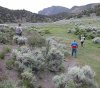Stakeholders walking thru a grazing area